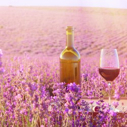 Wines & Spirits from Provence